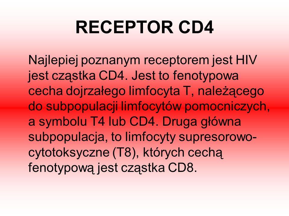 RECEPTOR CD4