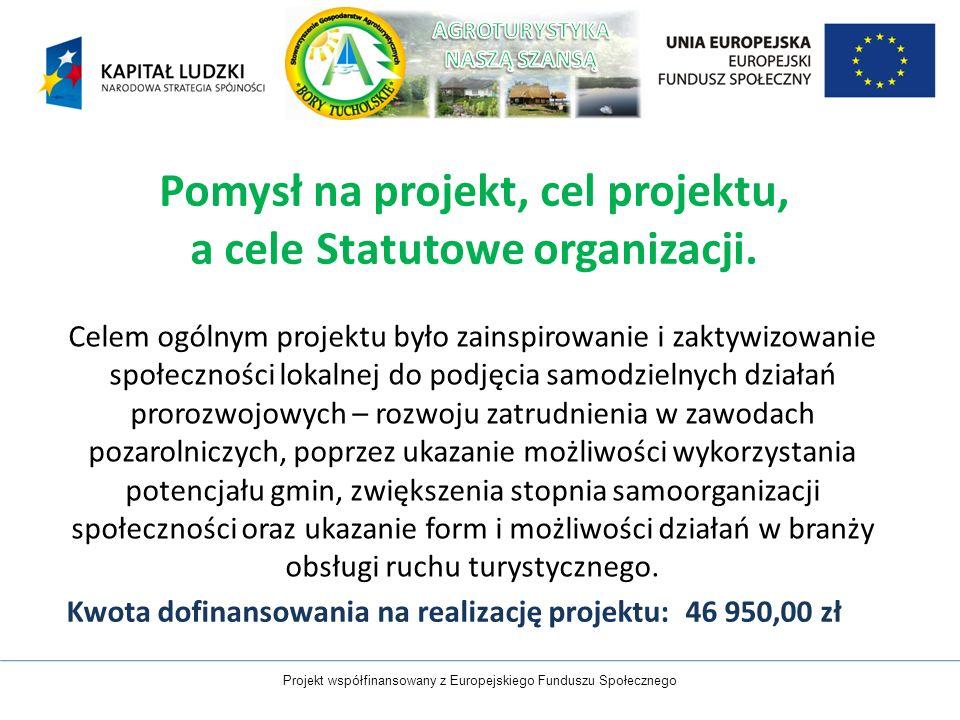 Pomysł na projekt, cel projektu, a cele Statutowe organizacji.