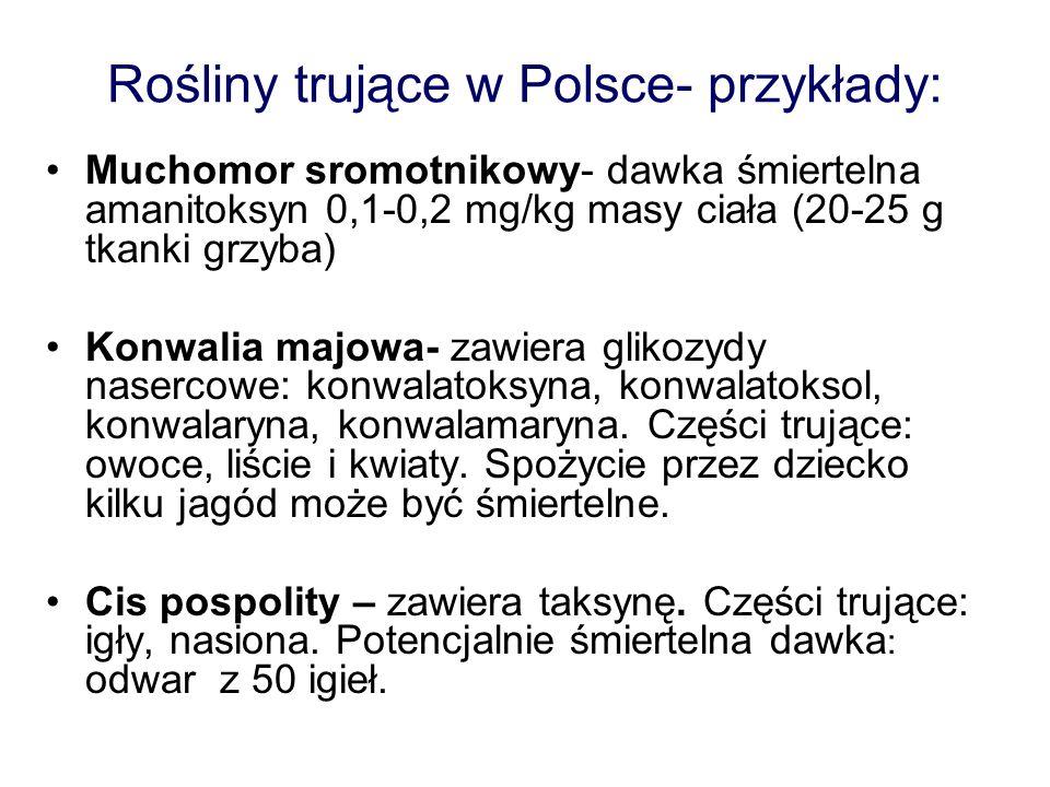 Rośliny trujące w Polsce- przykłady: