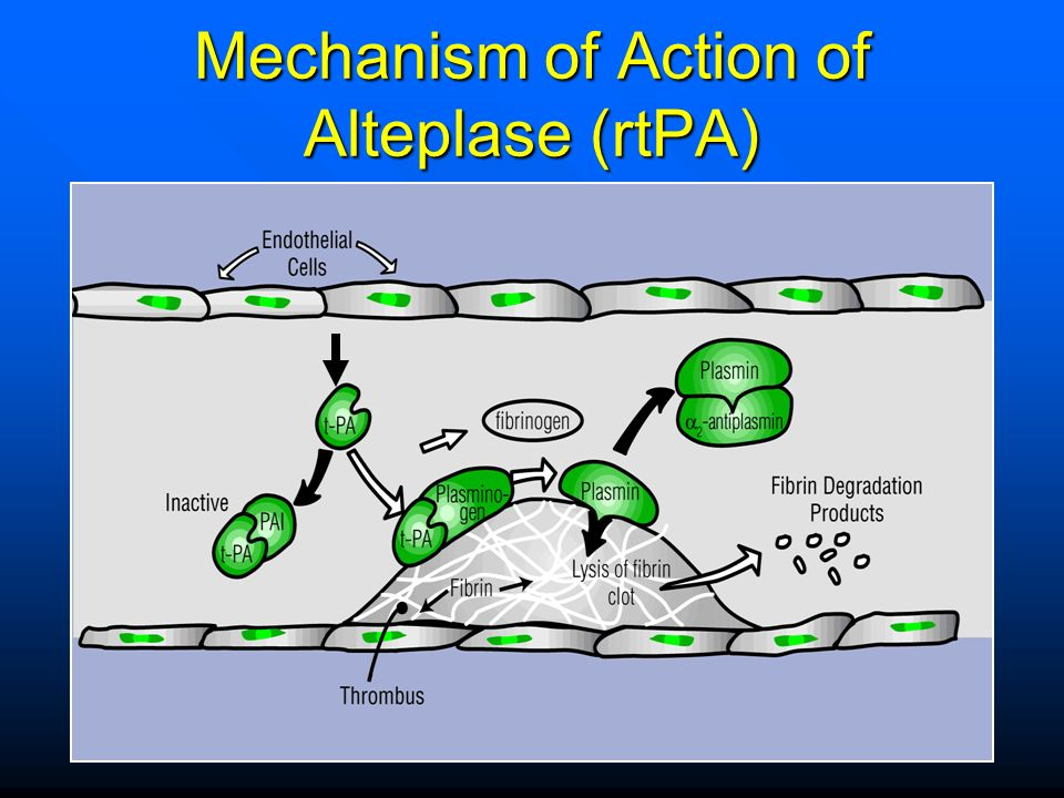 Mechanism of Action of Alteplase (rtPA)
