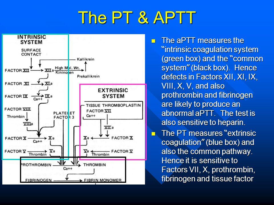 The PT & APTT