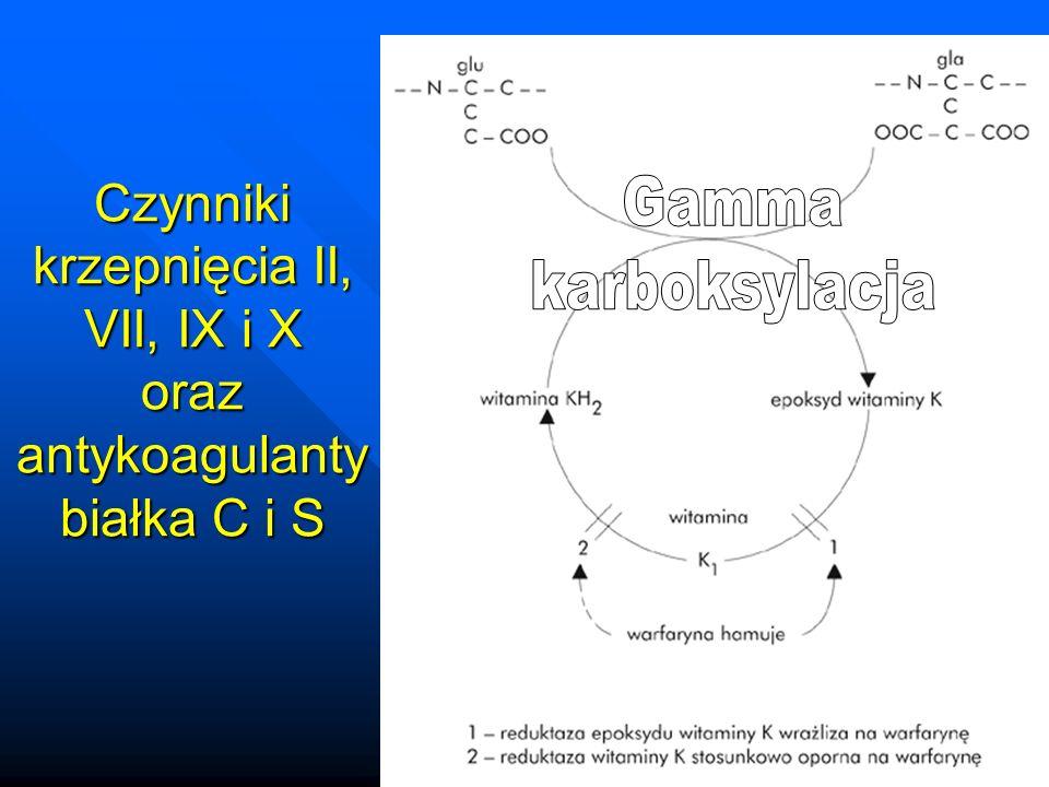 Czynniki krzepnięcia II, VII, IX i X oraz antykoagulanty białka C i S