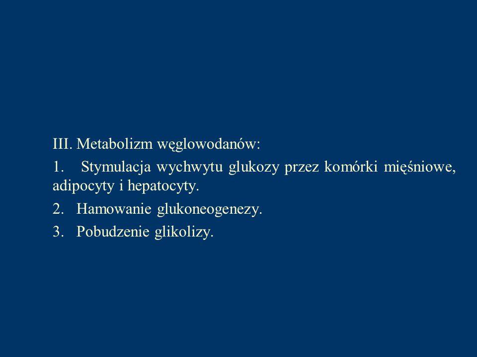 III. Metabolizm węglowodanów: