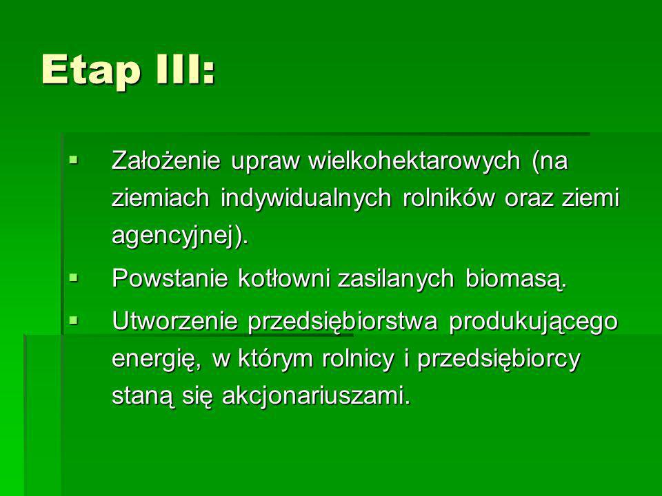 Etap III: Założenie upraw wielkohektarowych (na ziemiach indywidualnych rolników oraz ziemi agencyjnej).