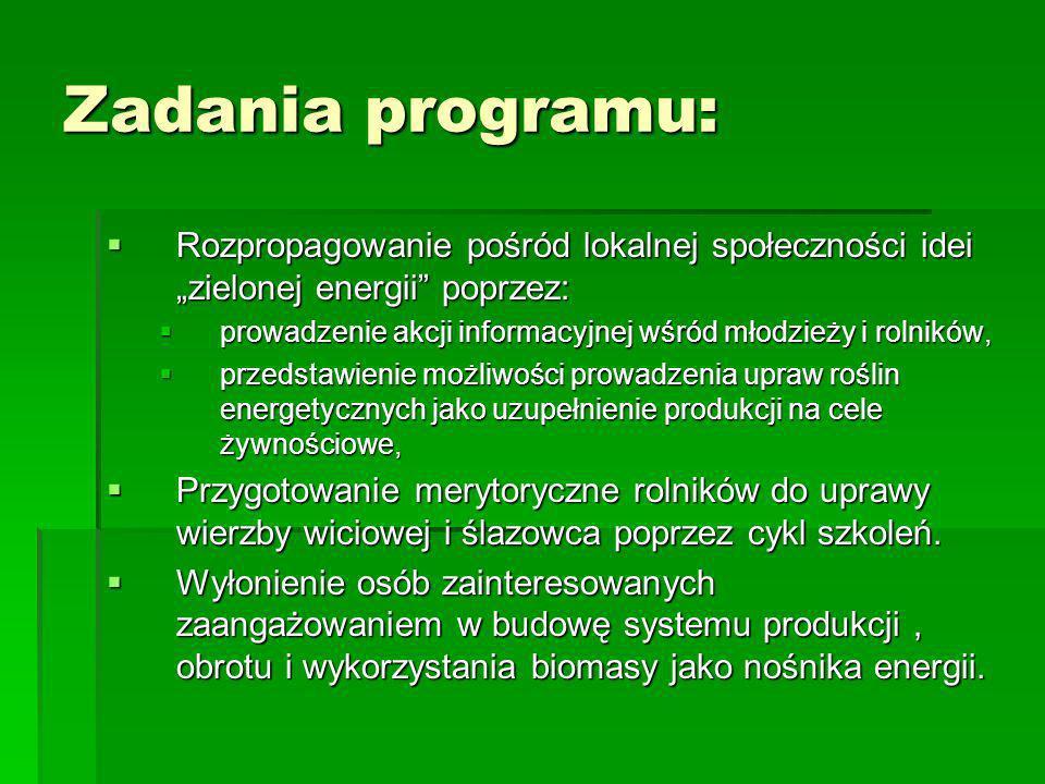 """Zadania programu:Rozpropagowanie pośród lokalnej społeczności idei """"zielonej energii poprzez:"""