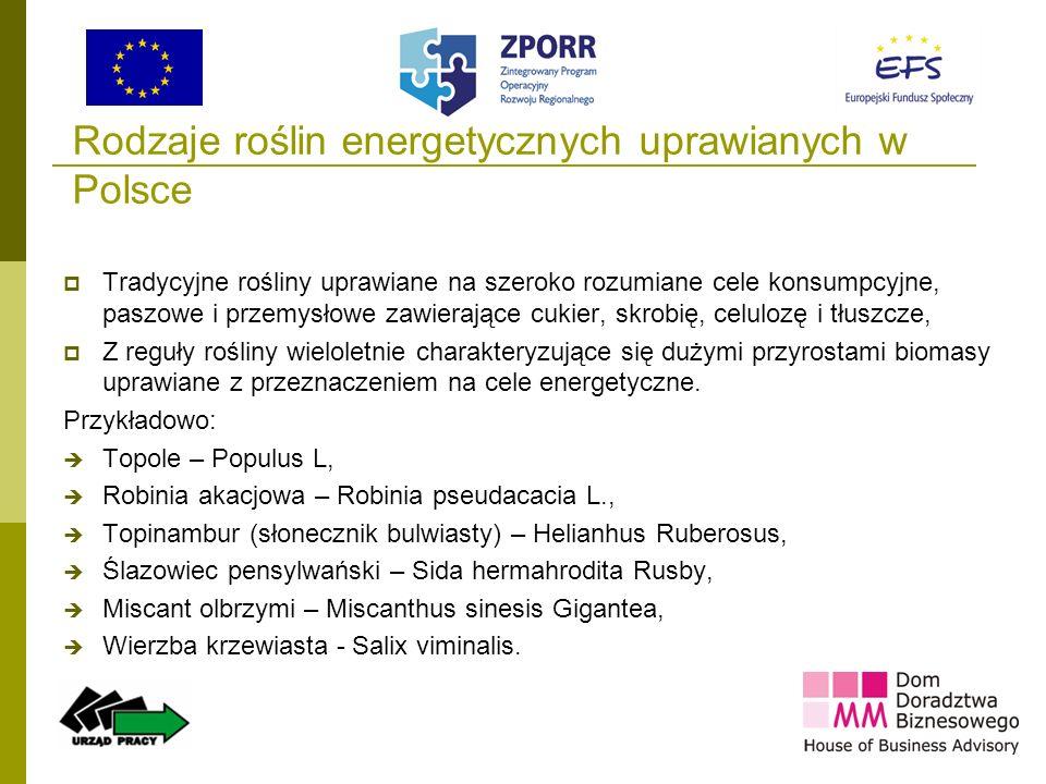 Rodzaje roślin energetycznych uprawianych w Polsce