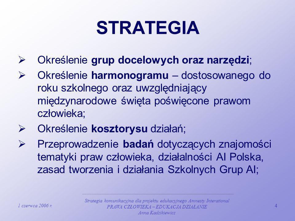 STRATEGIA Określenie grup docelowych oraz narzędzi;