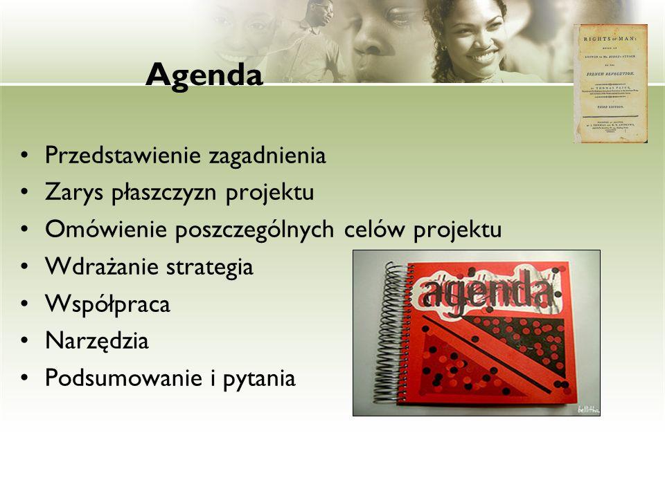 Agenda Przedstawienie zagadnienia Zarys płaszczyzn projektu