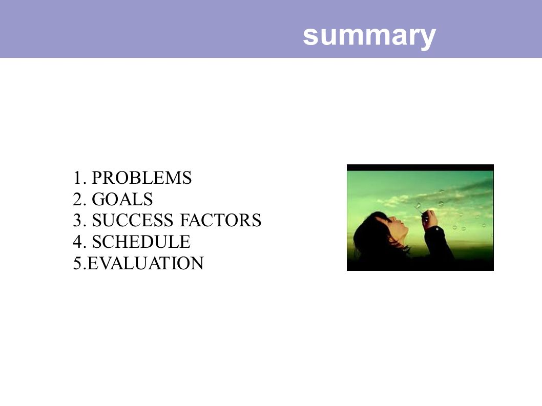 summary 1. PROBLEMS 2. GOALS 3. SUCCESS FACTORS 4. SCHEDULE
