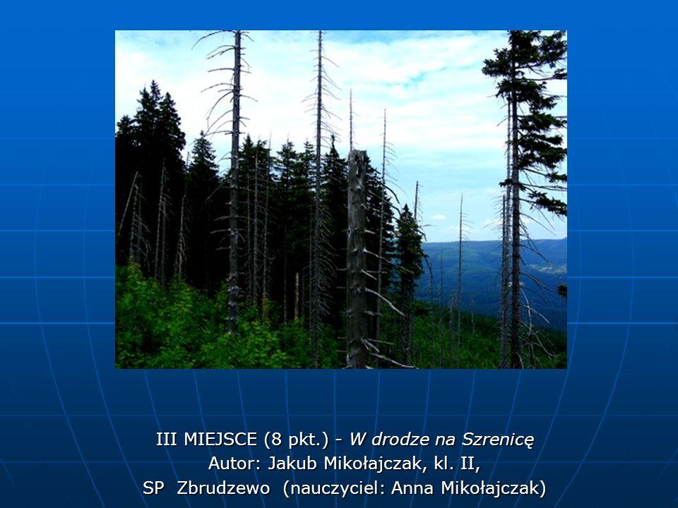 III MIEJSCE (8 pkt.) - W drodze na Szrenicę