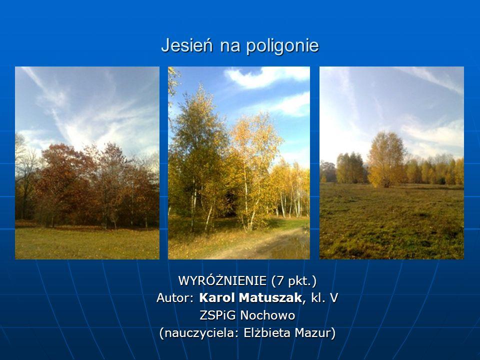 Jesień na poligonie WYRÓŻNIENIE (7 pkt.) Autor: Karol Matuszak, kl.