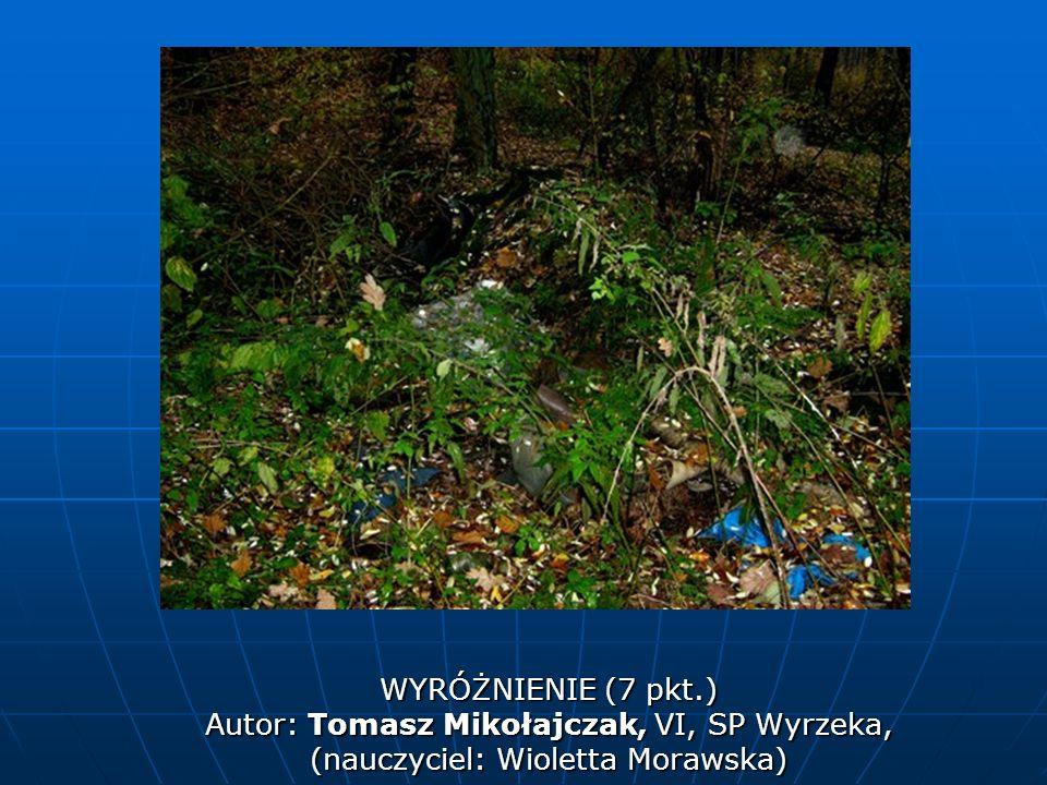Autor: Tomasz Mikołajczak, VI, SP Wyrzeka,