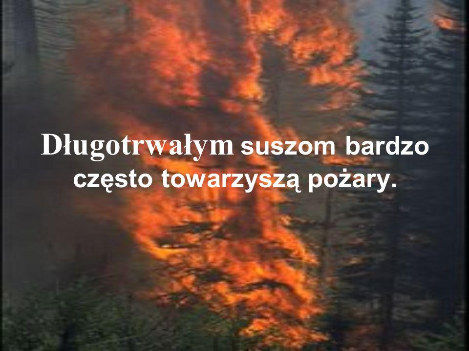 Długotrwałym suszom bardzo często towarzyszą pożary.