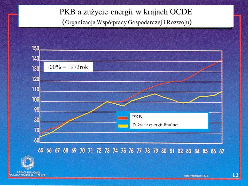 PKB a zużycie energii w krajach OCDE (Organizacja Współpracy Gospodarczej i Rozwoju)