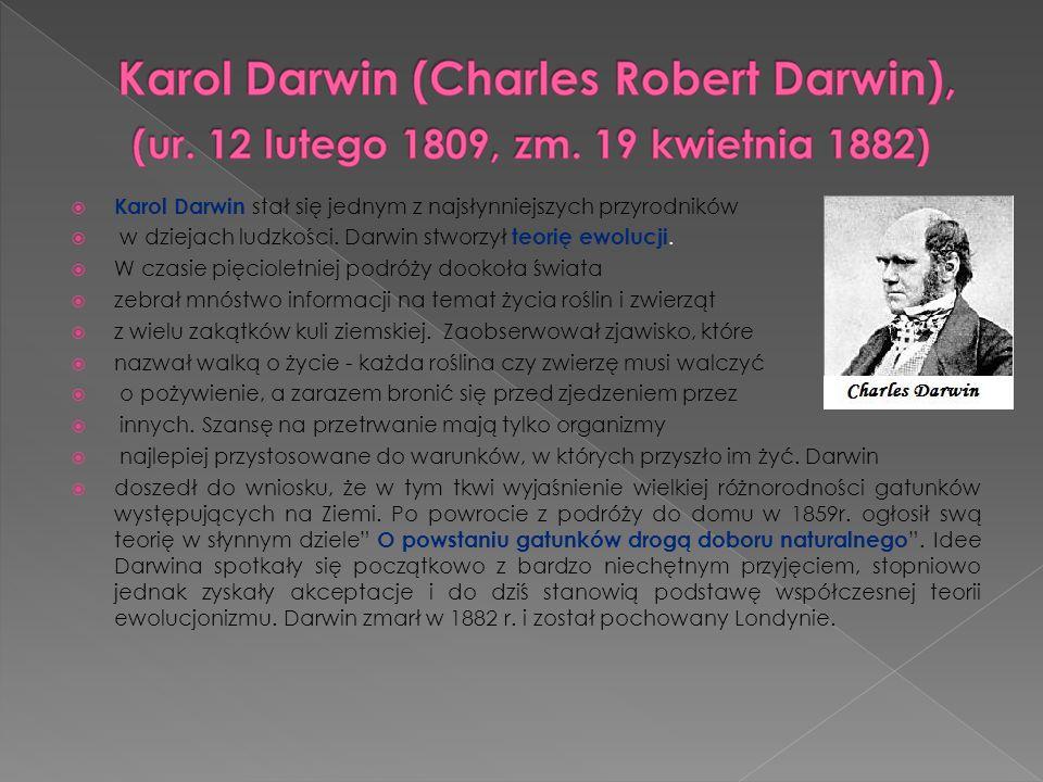 Karol Darwin stał się jednym z najsłynniejszych przyrodników