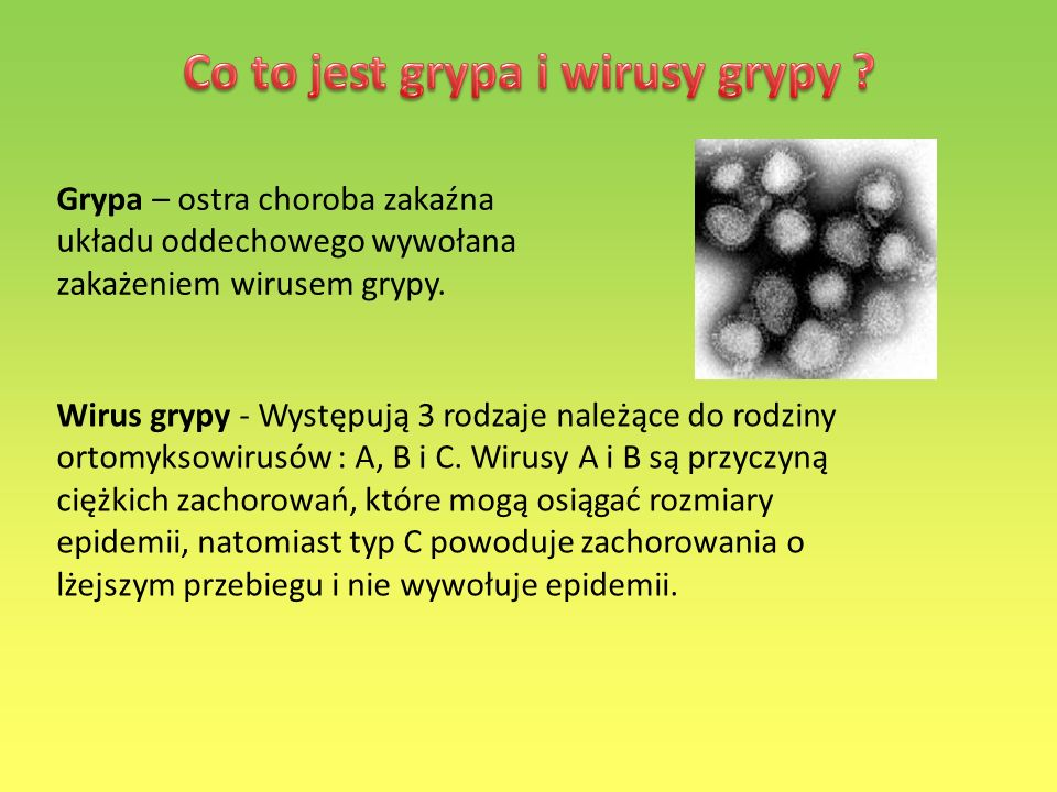 Co to jest grypa i wirusy grypy