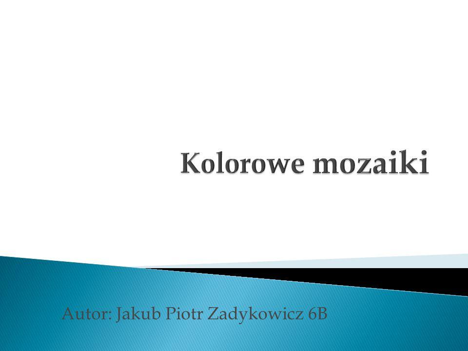 Autor: Jakub Piotr Zadykowicz 6B