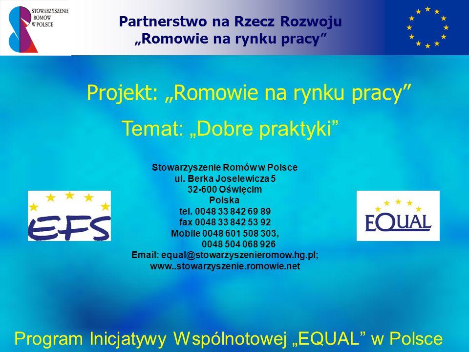 """Projekt: """"Romowie na rynku pracy"""