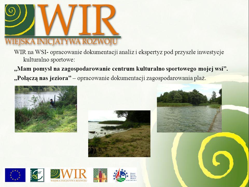 WIR na WSI- opracowanie dokumentacji analiz i ekspertyz pod przyszłe inwestycje kulturalno sportowe: