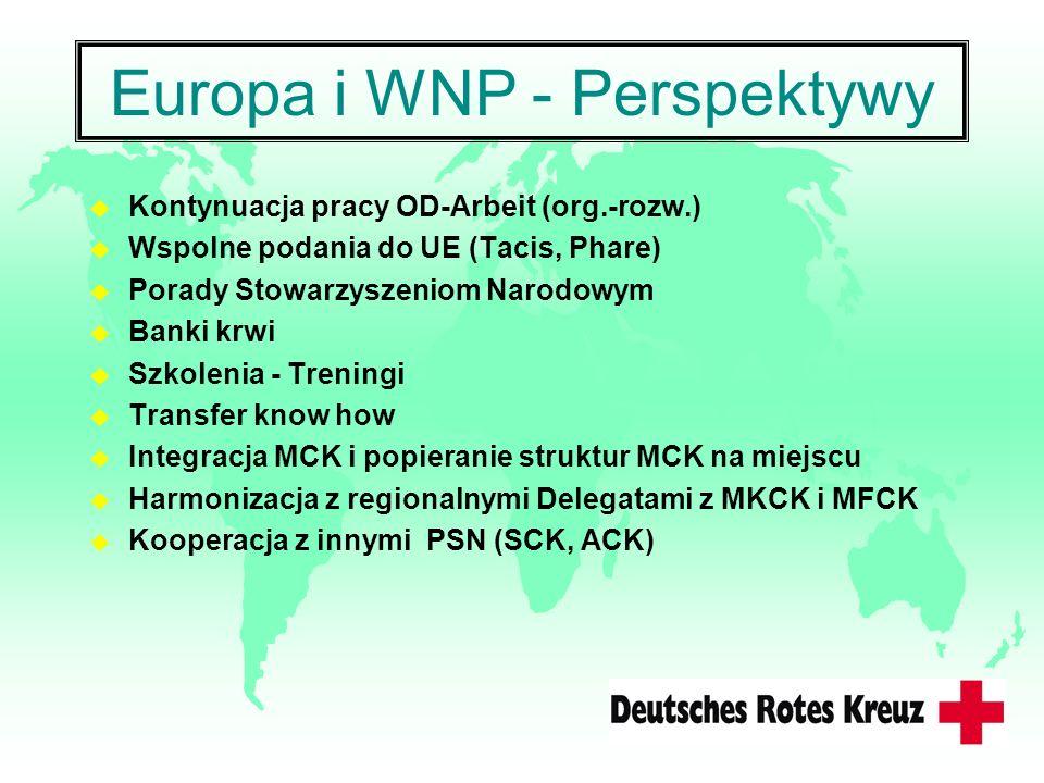 Europa i WNP - Perspektywy
