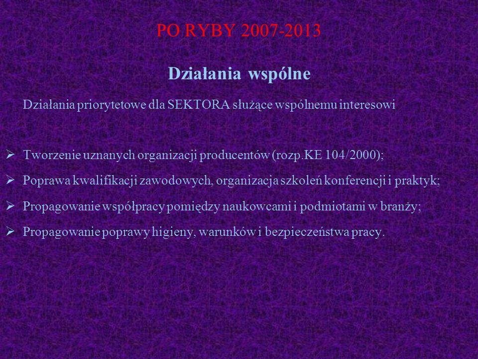 PO RYBY 2007-2013 Działania wspólne