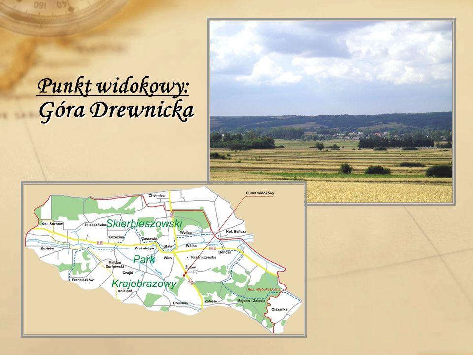 Punkt widokowy: Góra Drewnicka