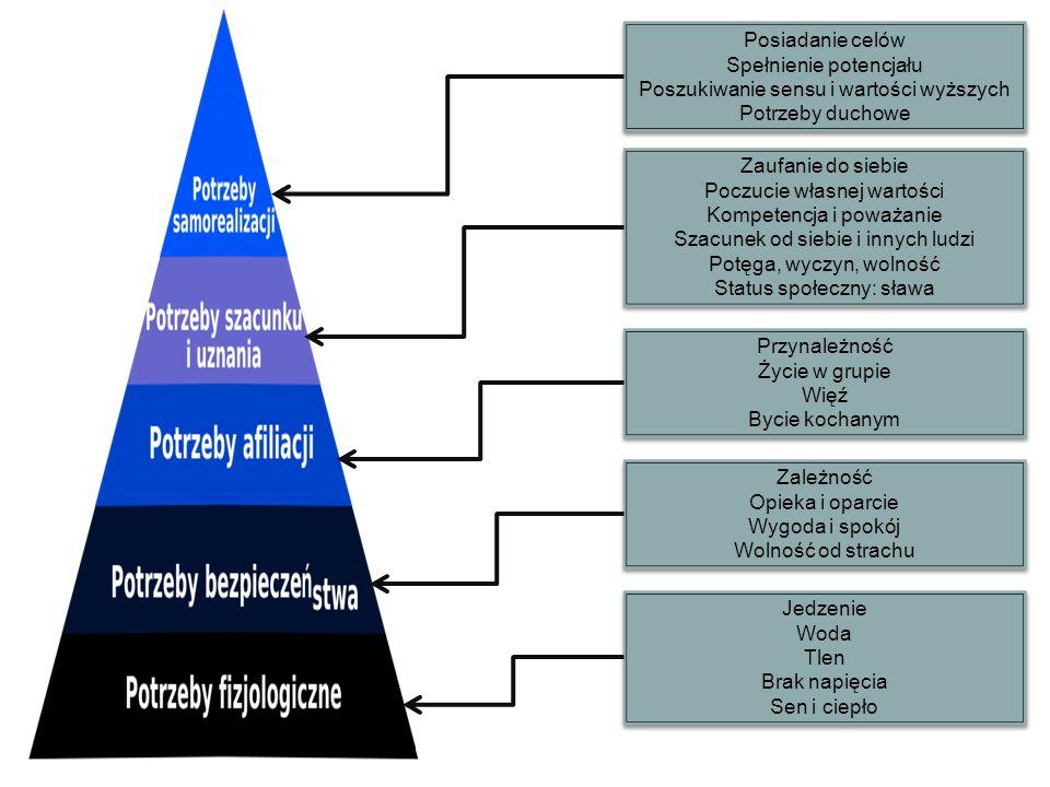 Spełnienie potencjału Poszukiwanie sensu i wartości wyższych