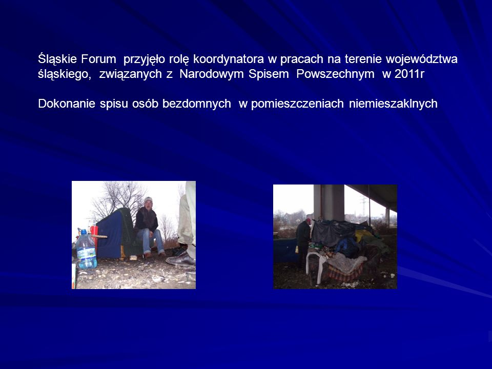 Śląskie Forum przyjęło rolę koordynatora w pracach na terenie województwa śląskiego, związanych z Narodowym Spisem Powszechnym w 2011r