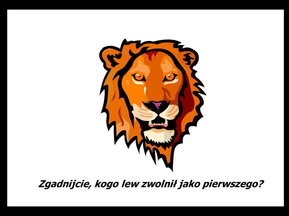 Zgadnijcie, kogo lew zwolnił jako pierwszego