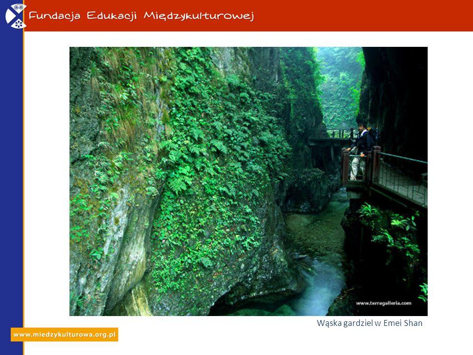 Wąska gardziel w Emei Shan
