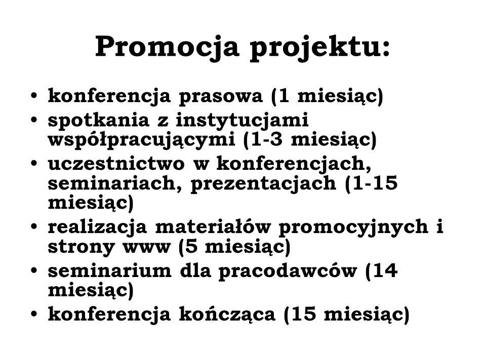 Promocja projektu: konferencja prasowa (1 miesiąc)