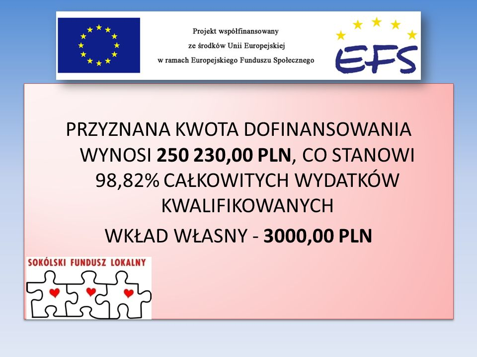 PRZYZNANA KWOTA DOFINANSOWANIA WYNOSI 250 230,00 PLN, CO STANOWI 98,82% CAŁKOWITYCH WYDATKÓW KWALIFIKOWANYCH WKŁAD WŁASNY - 3000,00 PLN
