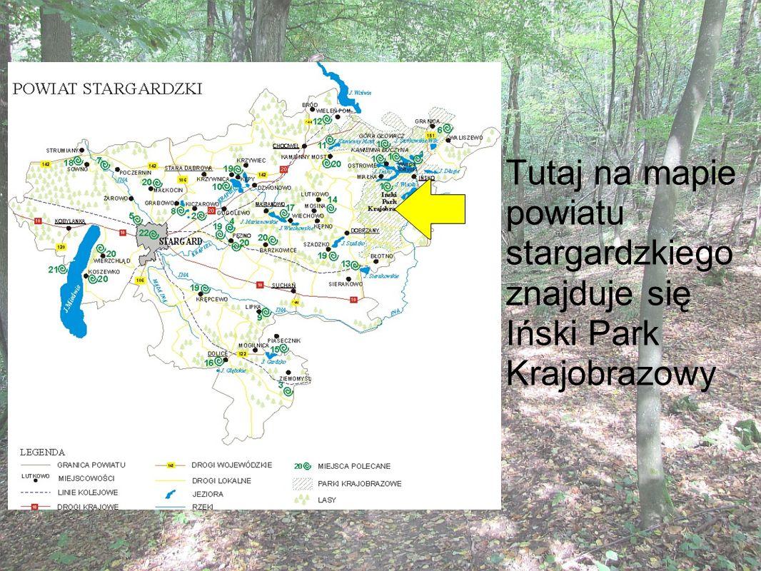 Tutaj na mapie powiatu stargardzkiego znajduje się Iński Park Krajobrazowy