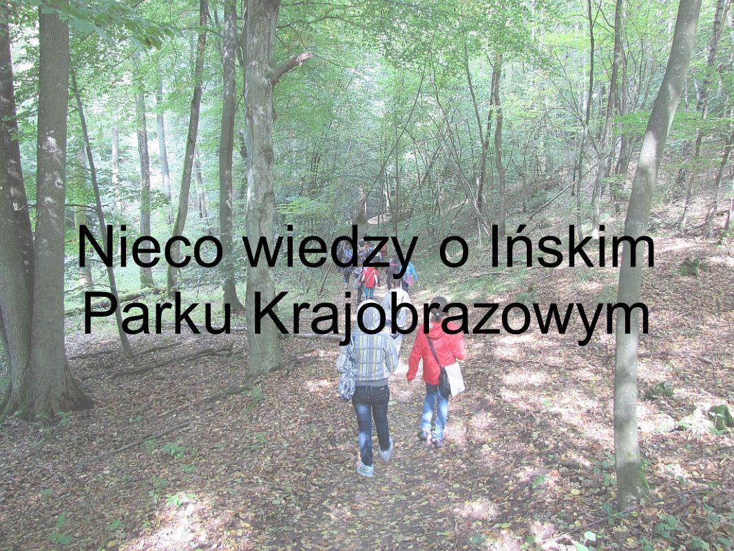 Nieco wiedzy o Ińskim Parku Krajobrazowym