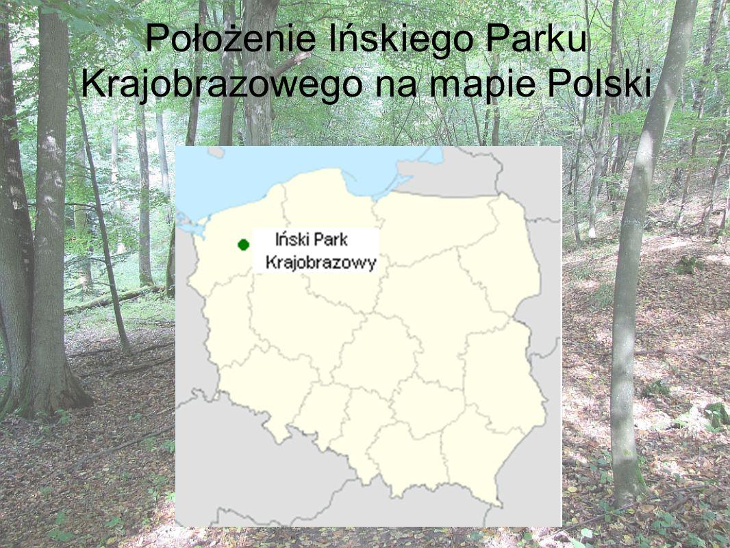 Położenie Ińskiego Parku Krajobrazowego na mapie Polski