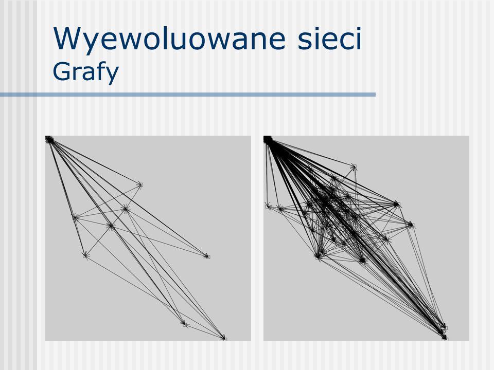 Wyewoluowane sieci Grafy