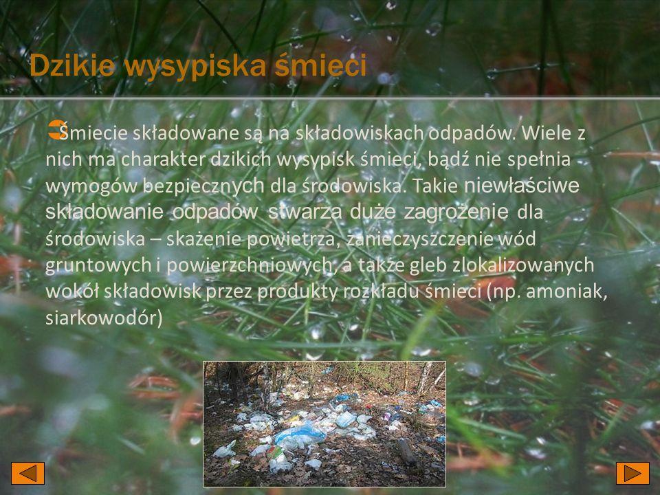 Dzikie wysypiska śmieci