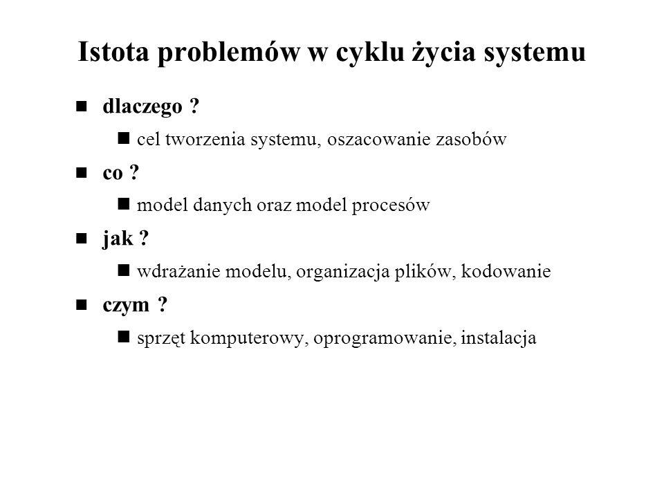 Istota problemów w cyklu życia systemu