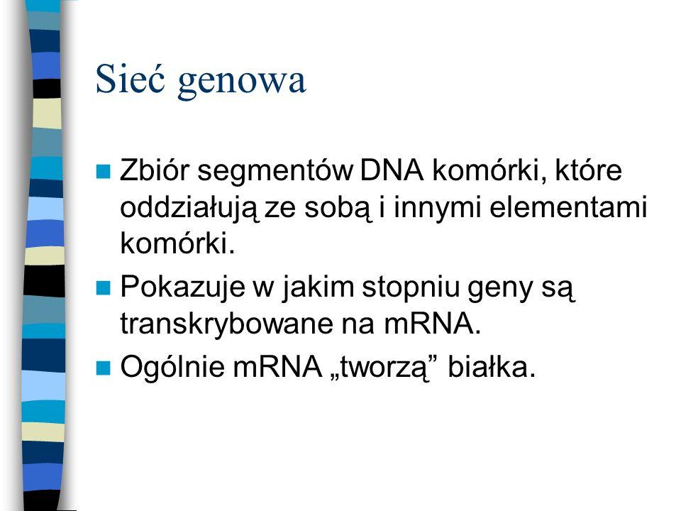 Sieć genowa Zbiór segmentów DNA komórki, które oddziałują ze sobą i innymi elementami komórki.