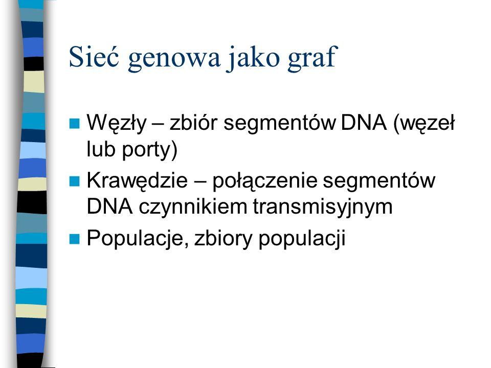 Sieć genowa jako graf Węzły – zbiór segmentów DNA (węzeł lub porty)