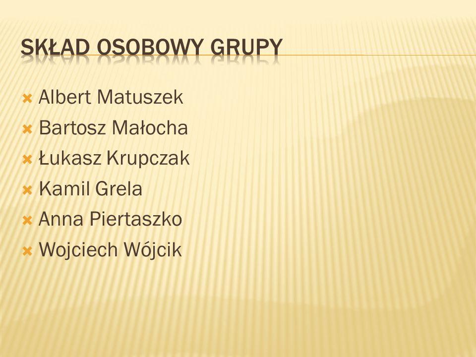 Skład osobowy grupy Albert Matuszek Bartosz Małocha Łukasz Krupczak