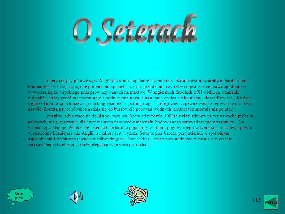O Seterach