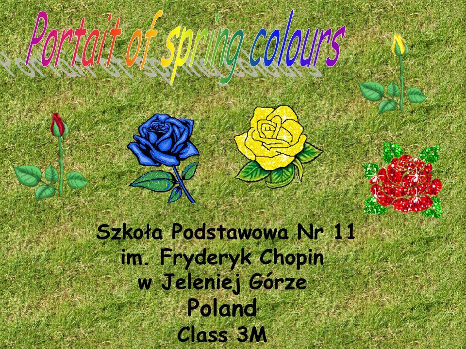 Szkoła Podstawowa Nr 11 im. Fryderyk Chopin