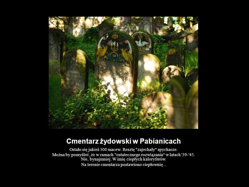 Cmentarz żydowski w Pabianicach