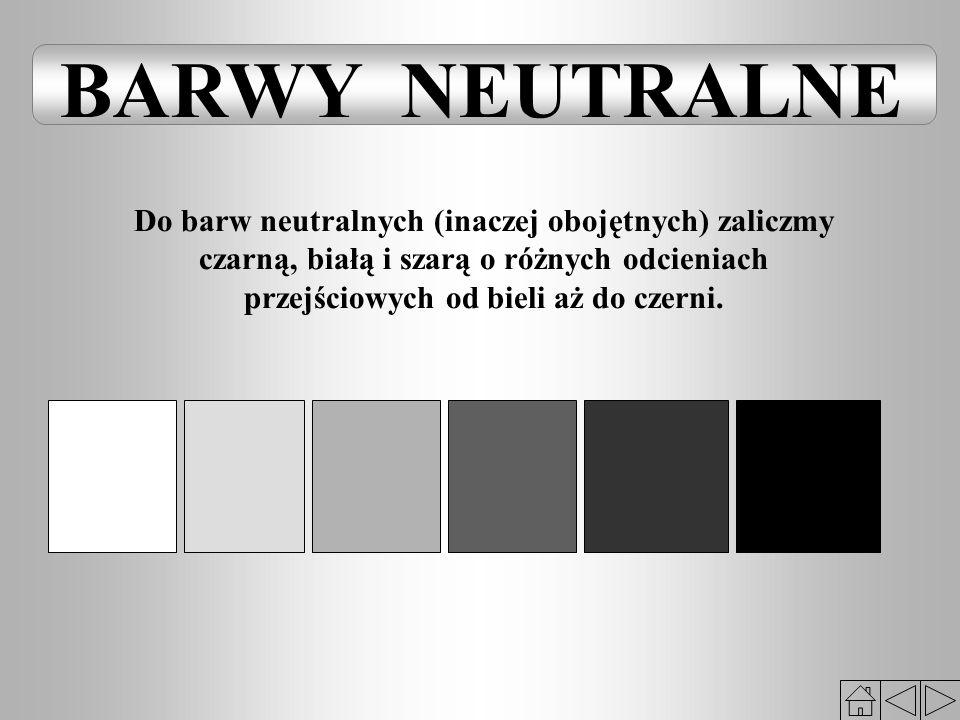 BARWY NEUTRALNE Do barw neutralnych (inaczej obojętnych) zaliczmy
