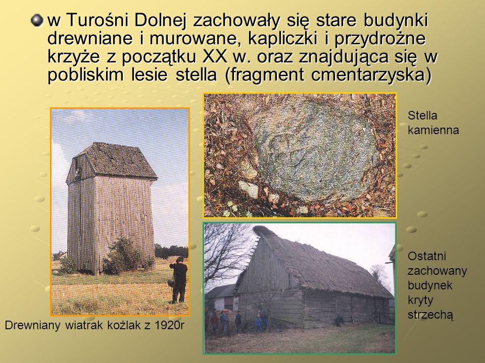 w Turośni Dolnej zachowały się stare budynki drewniane i murowane, kapliczki i przydrożne krzyże z początku XX w. oraz znajdująca się w pobliskim lesie stella (fragment cmentarzyska)