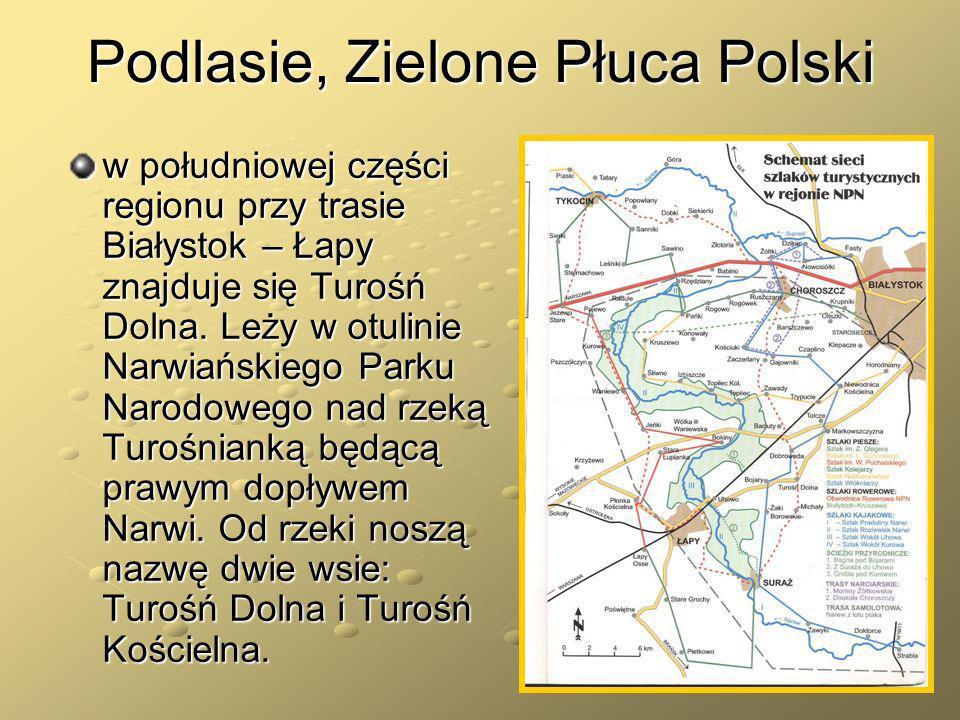 Podlasie, Zielone Płuca Polski