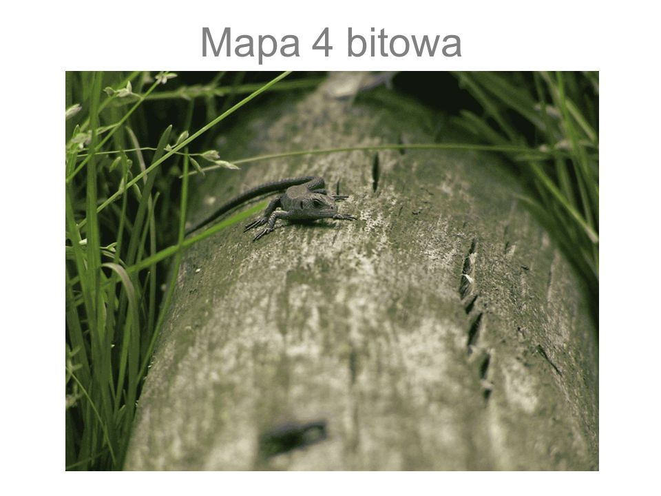 Mapa 4 bitowa