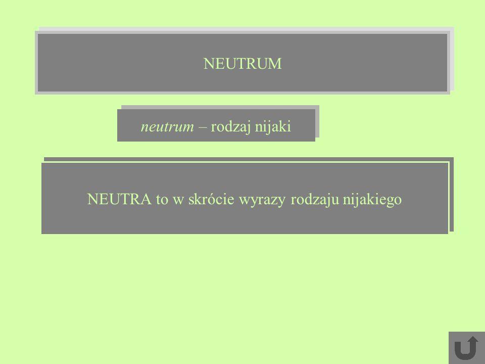 neutrum – rodzaj nijaki