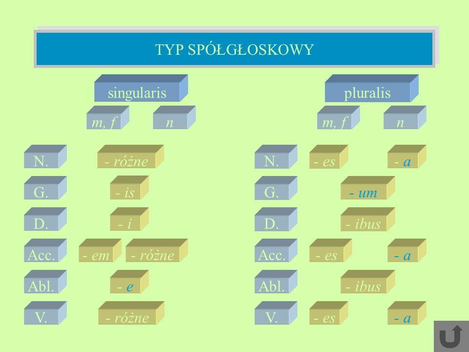TYP SPÓŁGŁOSKOWY singularis pluralis m, f n m, f n N. - różne N. - es